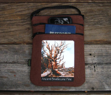 Ancient Bristle Cone Pine #800 Hemp 3 Zip Bag/Purse