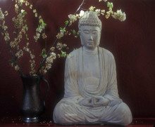 Buddha & Blossoms greeting card
