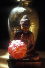 Bronwen's Buddha greeting card