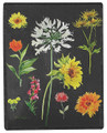 "FLOWER GARDEN THROW BLANKET - 50"" X 60"" - DAISY - SUNFLOWER - TULIPS"