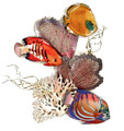 TROPICAL FISH AND CORAL REEF METAL WALL SCULPTURE - NAUTICAL WALL ART