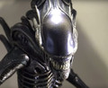 ALIEN WARRIOR - HOT TOYS 1/6 SIXTH SCALE FIGURE - MMS- 30TH ANNIVERSARY ALIENS