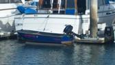 Savior Boat Lift Dock and Emergacey Float OS
