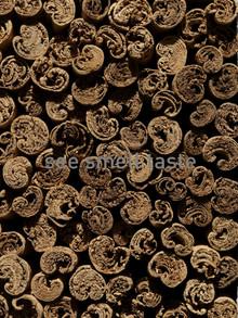 "Cinnamon Sticks Ceylon 5"""
