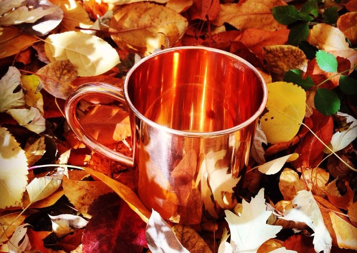 Copper Mugs Perfect for the Fall