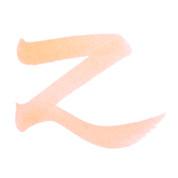 ZIG Art & Graphic Twin Tip Brush Pen - Tea Rose 220