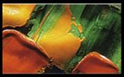 Liquitex - Iridescent Medium
