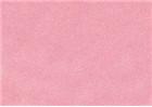 Sennelier Soft Pastels - Coral 924