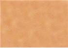 Sennelier Soft Pastels - Vermilion 85