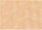 Sennelier Soft Pastels - Vermilion 86