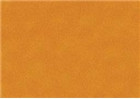 Sennelier Soft Pastels - Cadmium Yellow Orange 196