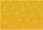 Sennelier Soft Pastels - Cadmium Yellow Orange 197