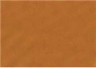 Sennelier Soft Pastels - Olive Green 241