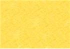 Sennelier Soft Pastels - Iridescent Gold Yellow 802