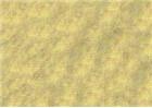 Sennelier Oil Pastels - Yellow Grey 013