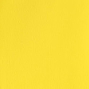 Winsor & Newton Designers' Gouache - Lemon Yellow S1