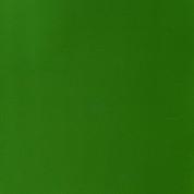 Winsor & Newton Designers' Gouache - Sap Green S2