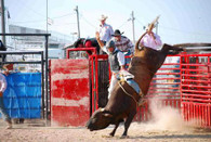 Monday Show - Extreme Bull Riding