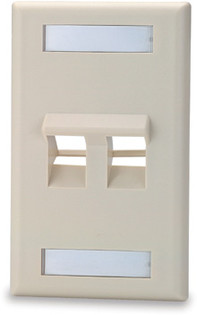2 Port Angled Single Gang Face Plate with Labeling Windows