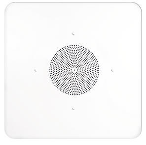 "8"" Dual Paper Cone 2'x2' Ceiling Tile Speaker with Transformer"