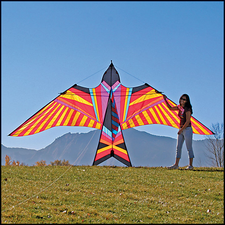 ittw-5656-gp-skybird-aloha.jpg