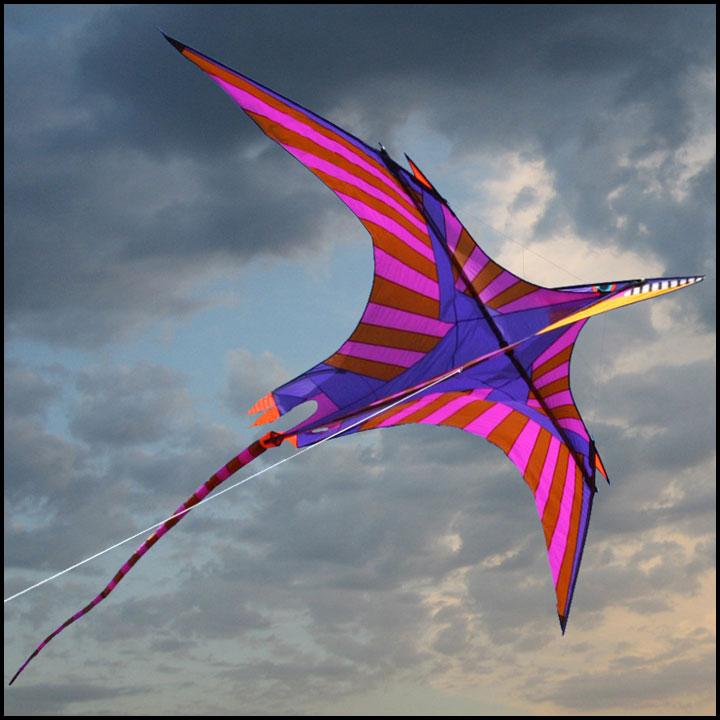 ittw-5657-gp-pterosaur.jpg