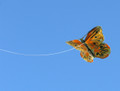 Great Winds Kites - GW Butterfly kite 10 pack
