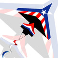 New Tech kites - Stars & Stripes 2D Airplane kite
