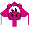 "HQ Kites - Eco Line Simple Flyer 47"" - Piggy"