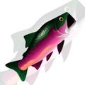 New Tech Kites - Steelhead Salmon windsock