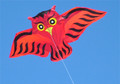 Flying Wings - Hugo the Owl