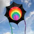 New Tech Kites - Aerial Star by Kathy Goodwind