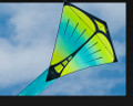 Prism Designs - Pica Single line kite