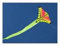 Prism Designs - Mantis Single line kite