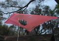 iFlite kites - iFlite II Vented