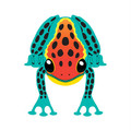 "Xkites - Midi Nylon Kite - ""Tree Frog"""