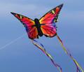 "HQ Kites - Butterfly Kite Ruby ""R"""