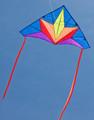"HQ Kites - Delta ""Stern"""