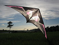 Flying Wings Kites - Prediction UL 