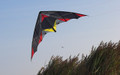HQ Kites - Bat Kite R2F