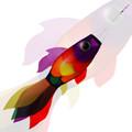 New Tech Kites - Rainbow Koi fish windsock