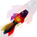 New Tech Kites - Rainbow Koi fish windsock
