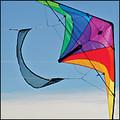 ITTW- Windshield