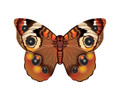 "WindnSun - Microkite Butterfly ""Buckeye"""