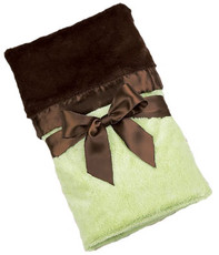 Silky Soft Security Blanket Kiwi