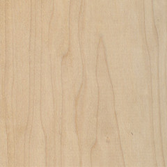 Hard Maple showing flat sawn grain
