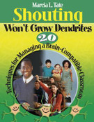 Shouting Won't Grow Dendrites: