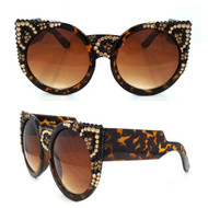 Leopard on Brown Frame
