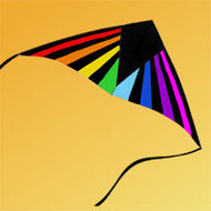 7 foot Radian Delta Kite with 50lb Line- Rainbow