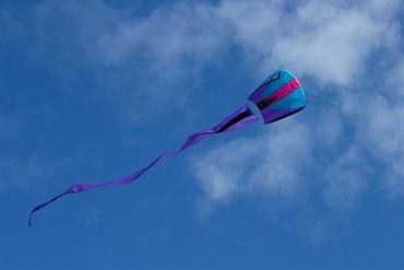 Prism Bora 7 Kite - Frost
